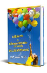 Pongor-Juhász Attila - Célkitűzés és célmegvalósítás munkafüzet